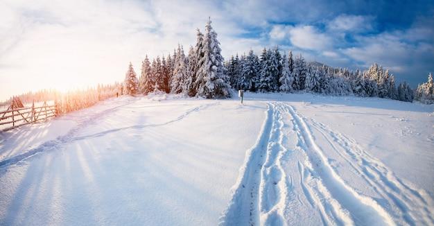 Wspaniały zimowy krajobraz
