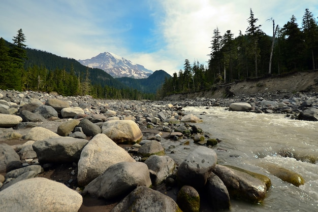 Wspina się dżdżystego park narodowy w usa z skałami w przedpolu i rzece