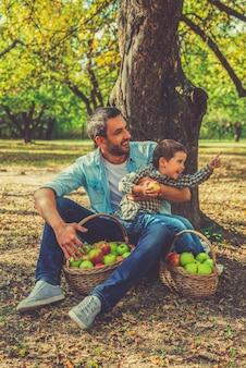 Wspólne spędzanie czasu. zabawny mały chłopiec trzymający jabłko i odwracający wzrok, podczas gdy jego ojciec siedzi obok niego na ziemi