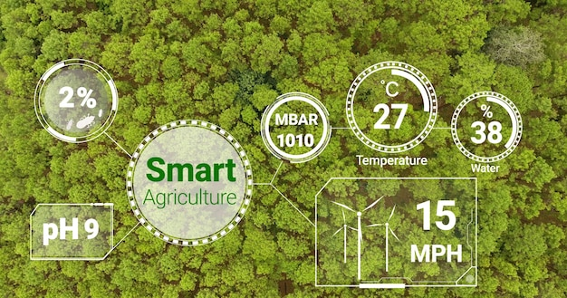 Wspomagana komputerowo koncepcja uprawy plantacji.