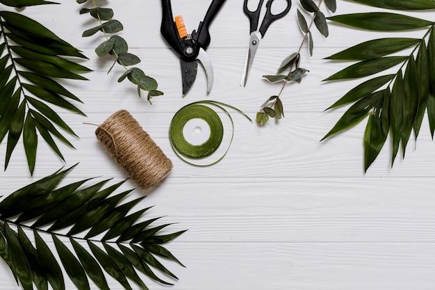 Wstążka, lina i rośliny