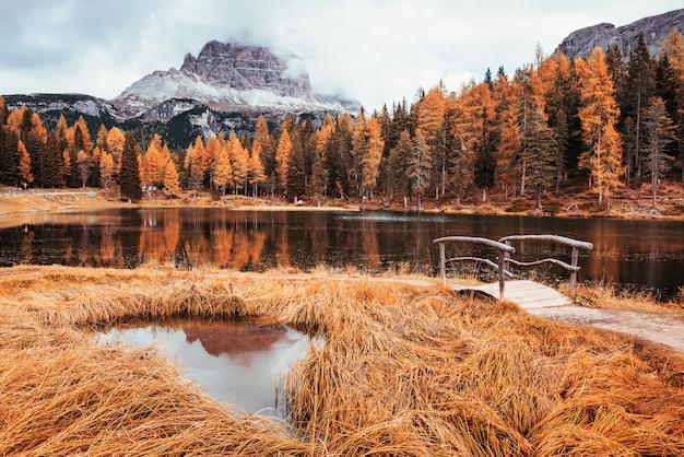 Wszystkie drzewa mają żółty kolor. niesamowity widok na majestatyczne góry z lasami przed nimi w jesienny dzień. kałuża, która wychodzi z jeziora z małym mostkiem