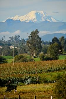 Wulkan chimborazo, najbliższy słońcu punkt, ekwador
