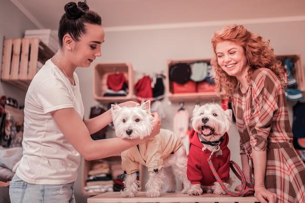 Wybór odzieży. sprzedawczyni sklepu zoologicznego pomagająca kobiecie wybrać ubrania dla psów