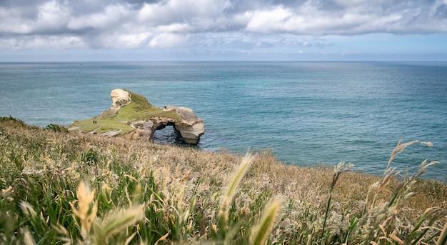 Wybrzeże i ocean w pochmurny dzień z trawami i plażą w tunelu klifowym nowa zelandia