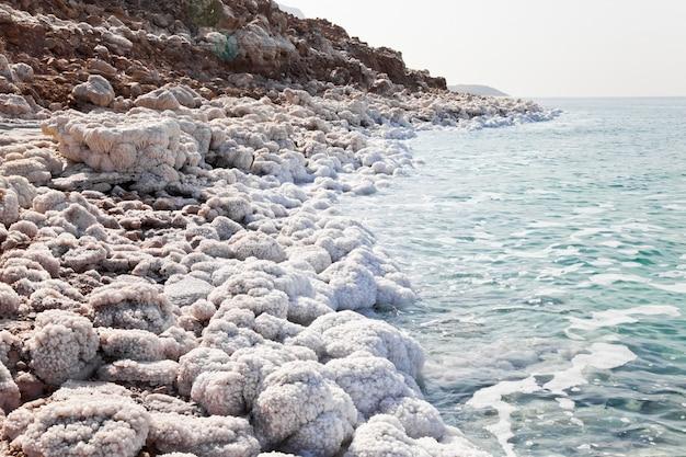 Wybrzeże morza martwego w jordanii