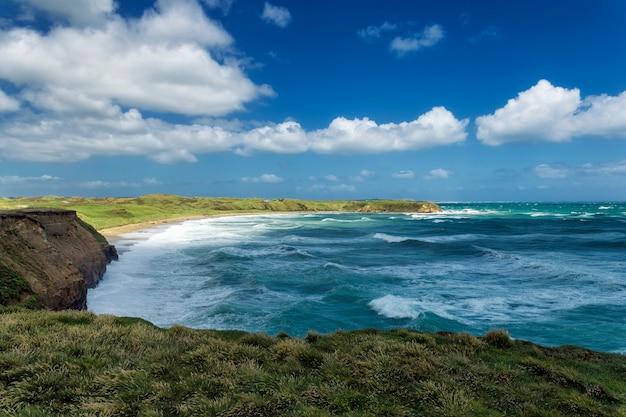 Wybrzeże pacyfiku i duże fale z białą pianą w otago, nowa zelandia
