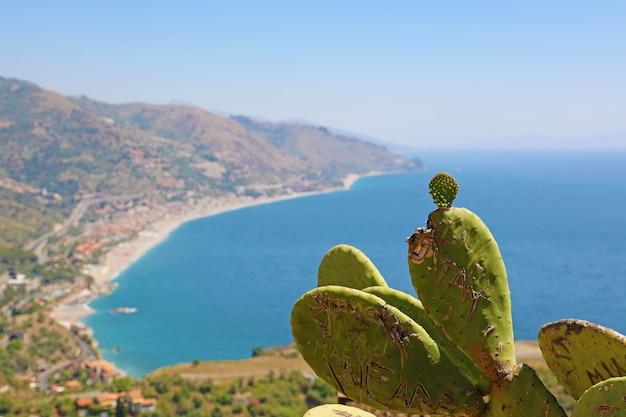 Wybrzeże sycylii, z naciskiem na kaktusa