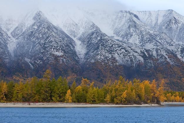 Wybrzeże z lasem jesień na tle gór, zbliżenie