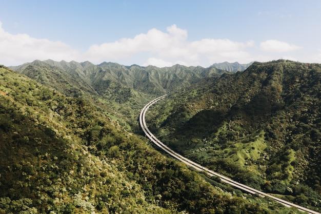 Wychodzący widok na szlak pętli aiea na hawajach w usa