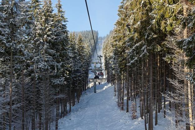 Wyciąg krzesełkowy w lesie. wyciąg krzesełkowy między drzewami leśnymi w karpatach, ośrodek bukovel.