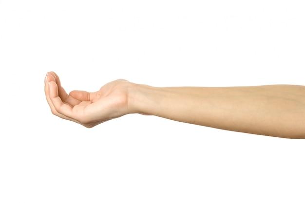 Wyciągnięta ręka. kobiety ręki gestykulować odizolowywam na bielu