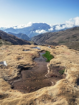 Wycieczka górska. widok na małe górskie puddie, które służą jako leniwe stado krów. widok pionowy.