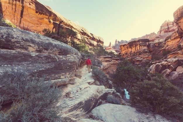 Wycieczka po parku narodowym zion