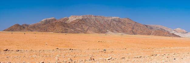 Wycieczka samochodowa po pustyni namib w namibii. afryka.