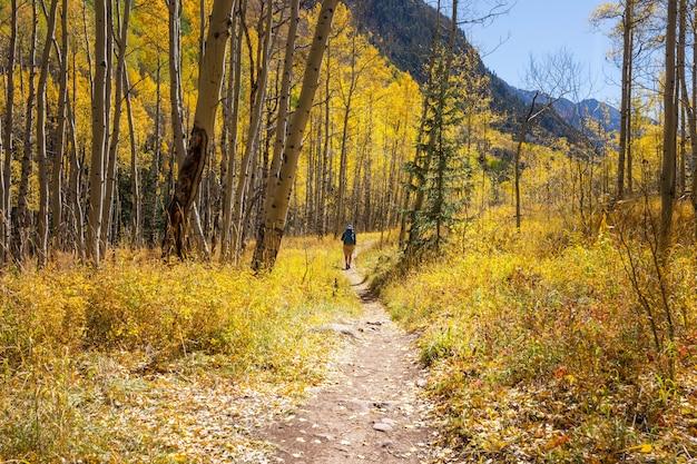 Wycieczka w jesienne góry. jesienny motyw.