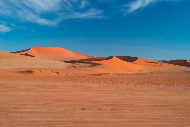 Wydmy na pustyni namib o świcie, wycieczka po cudownym parku narodowym namib naukluft, cel podróży.