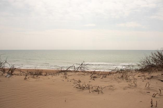 Wydmy na tle zachodzącego słońca na plaży
