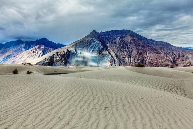 Wydmy w himalajach. hunder, dolina nubra, ladakh