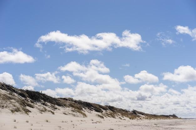 Wydmy z chmurami typowy krajobraz nadbałtyckiej plaży