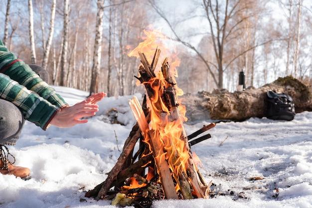 Wygrzewa się w pobliżu ogniska w zaśnieżonym lesie brzozowym