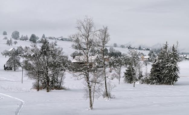 Wyjątkowy zimowy krajobraz
