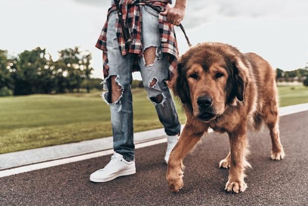 Wyjście o dobrym spacerze. zbliżenie: mężczyzna spacerujący z psem podczas spędzania czasu na świeżym powietrzu