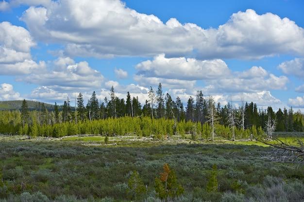 Wyoming scenery