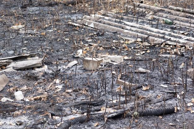 Wypalona ziemia i rośliny oraz śmieci po pożarze