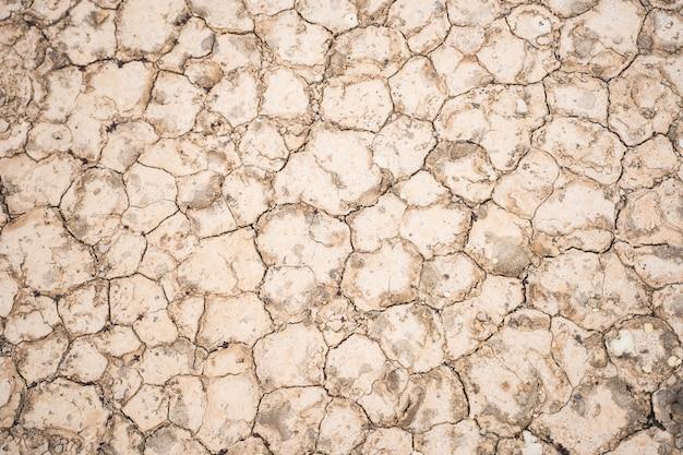 Wysoki k? t bliska strza? z krakowanej ziemi tekstur na tle