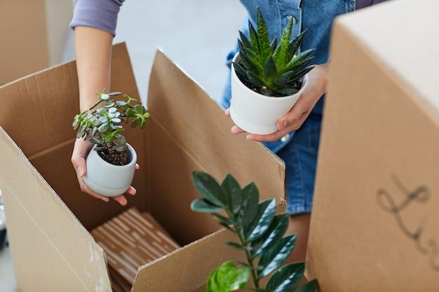 Wysoki kąt bliska nierozpoznawalnej młodej kobiety pakowania roślin do pudeł kartonowych podczas przeprowadzki do nowego domu lub mieszkania