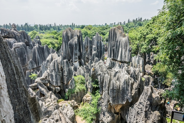 Wysoki kąt strzału obszaru krajobrazowego kamiennego lasu naigu w parku narodowym w kunming w chinach