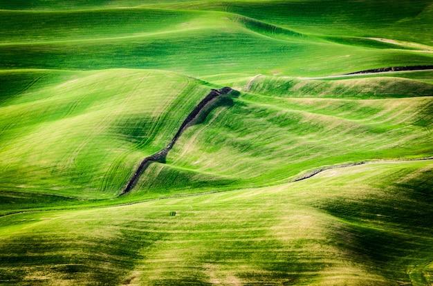 Wysoki kąt strzału zielonych wzgórz w ciągu dnia we wschodnim waszyngtonie
