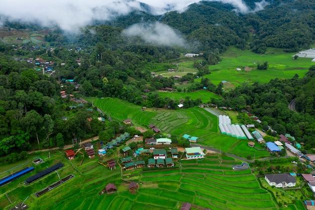 Wysoki kąt widzenia tarasu ryżowego w chiang mai północnej tajlandii