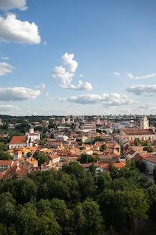 Wysoki kąt widzenia wilna otoczonego budynkami i zielenią w nasłonecznionym miejscu na litwie