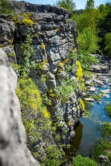 Wysoki klif nad rzeką porośnięty kwiatami i trawą