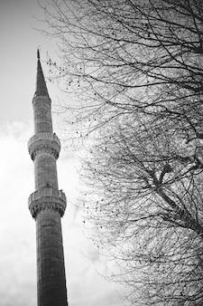 Wysoki muzułmański minaret