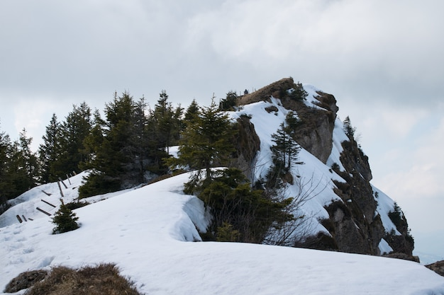 Wysoki skalny klif pokryty śniegiem pod zachmurzonym niebem