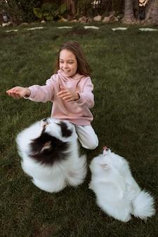 Wysoki widok psy bawiące się z dziewczyną