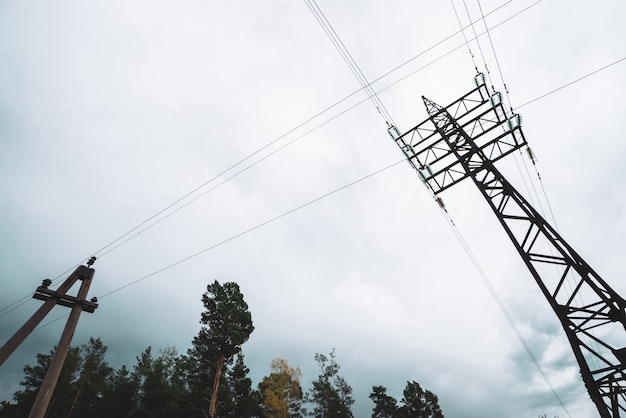 Wysokie napięcie linii energetycznych wśród drzew pod zachmurzonym niebem. wieży dystrybucji energii elektrycznej w lesie z copyspace. minimalistyczny widok z dołu na słupy z drutami przy pochmurnej pogodzie.