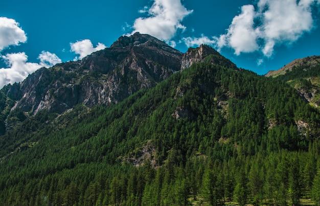 Wysokie skaliste góry zakrywać z zielonymi drzewami pod chmurnym niebem przy pragelato, włochy