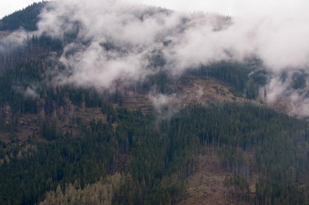 Wysokie tatry w polsce w deszczową mgłową pogodę