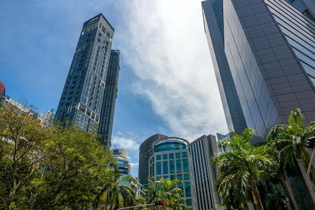 Wysokie wieżowce, palmy i inne drzewa