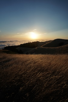 Wysokie wzgórza pokryte suchą trawą z widoczną panoramą na mt. tam w marin, kalifornia