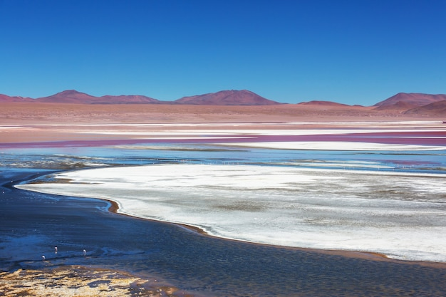 Wysokie zaśnieżone góry w boliwii