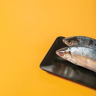 Wysokiego kąta przygotowania z ryba na żółtym tle