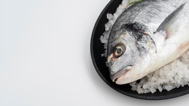 Wysokiego kąta surowa ryba kłaść na kostkach lodu