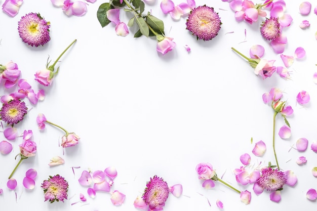 Wysokiego kąta widok menchia kwitnie na białym tle