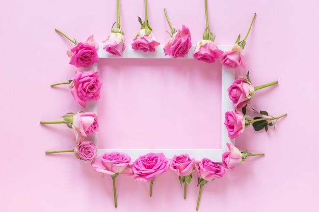Wysokiego kąta widok różowi kwiaty otacza ramę na różowym tle