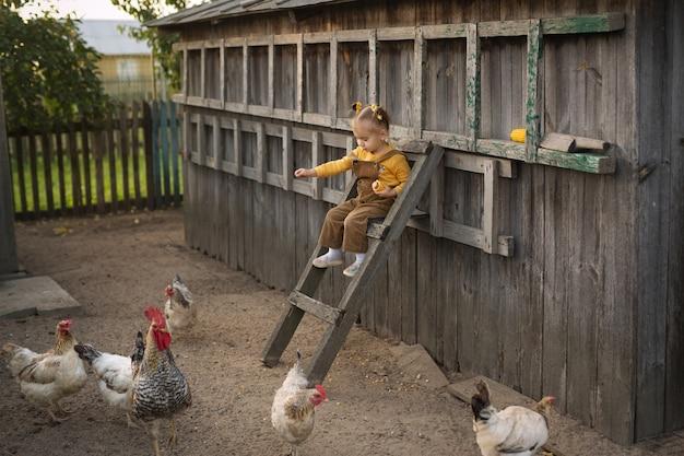 Wysoko na schodach siedzi dziecko w kombinezonie i karmi kurczaki kukurydzą. zabawna dziewczyna na farmie opiekuje się zwierzętami. kogut z kurami we wsi.